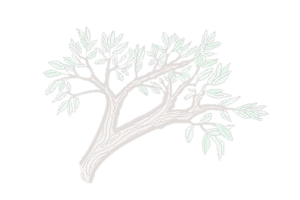 AAPO logo branch graphic